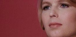 'XY CHELSEA' IN CINEMAS & ON DEMAND